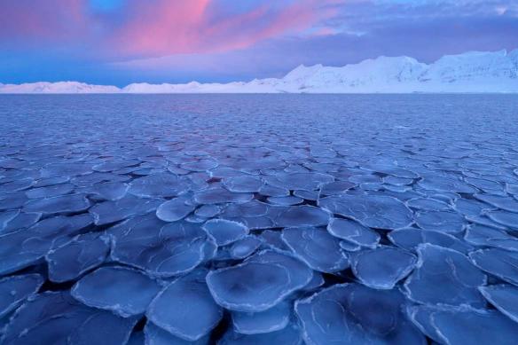 papier peint trompe l'oeil hiver arctique