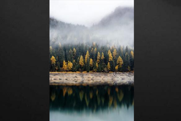 Tableau paysage lac en forêt