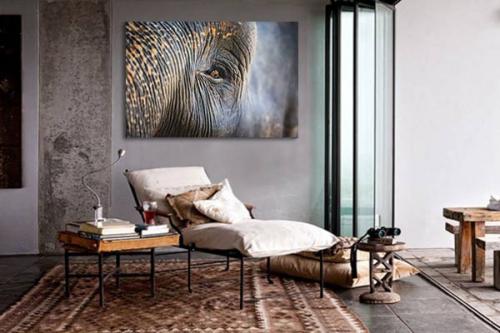 Toile éléphant asiatique