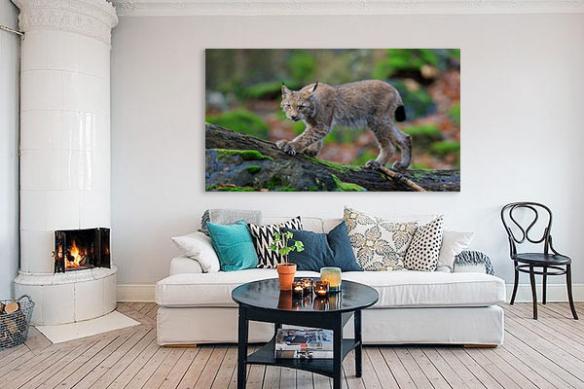 tableau déco salon lynx