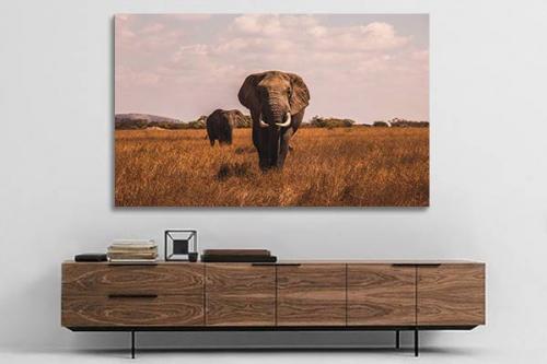 Toile éléphant dans la savane africaine