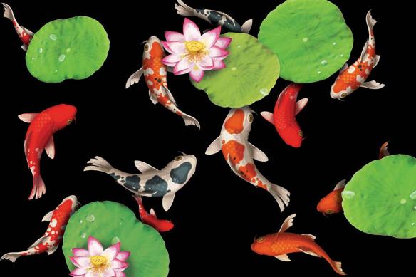 papier-peint-zen-poisson