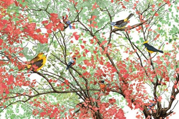 papier-peint-feuillage-oiseaux-rouge