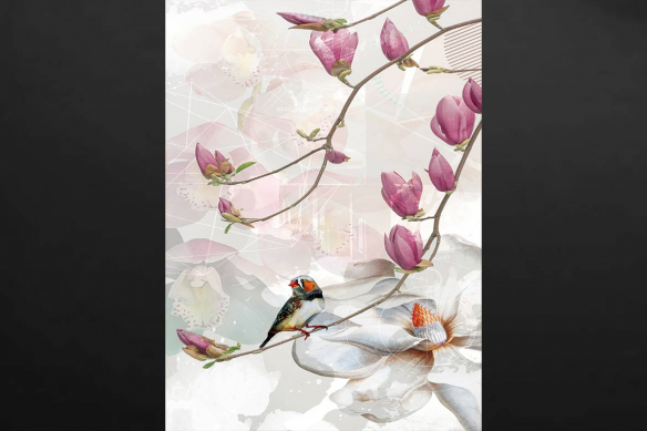 cadre-oiseau-sur-branche-de-magnolia
