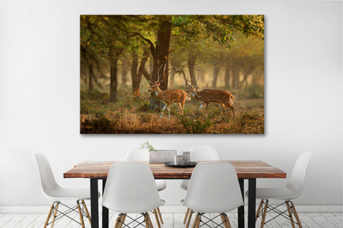 Tableau cerfs en forêt