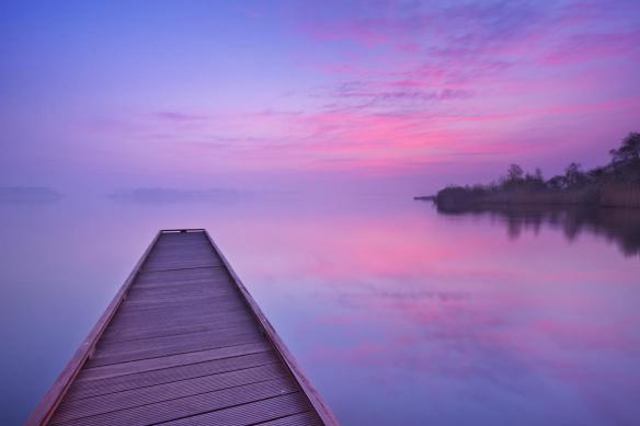 papier peint violet far away