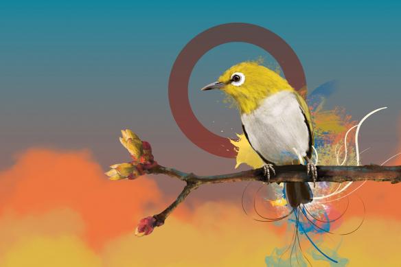 tableau oiseau quiet time bleu
