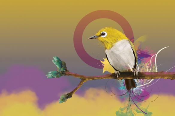 tableau sur toile oiseau quiet time jaune