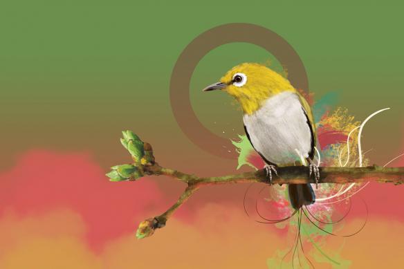 toile murale oiseau quiet time vert