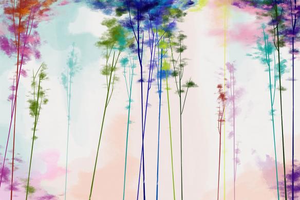 toile-arbre-sycomore