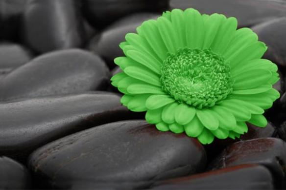 Tableau moderne contemporain vert