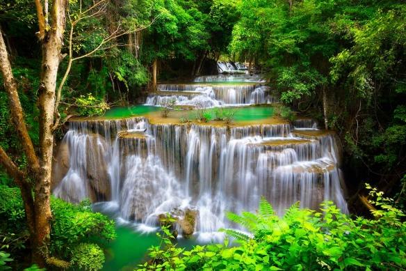 tapisserie tropicale cascade dans la jungle