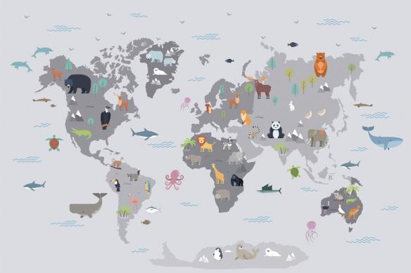 décoration murale carte du monde chambre enfant animaux