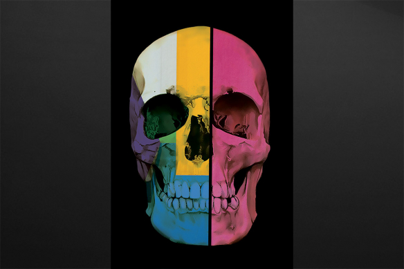 toile moderne crane tete de mort couleurs