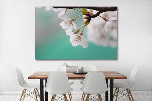 tableau fleurs blanches déco salle a manger