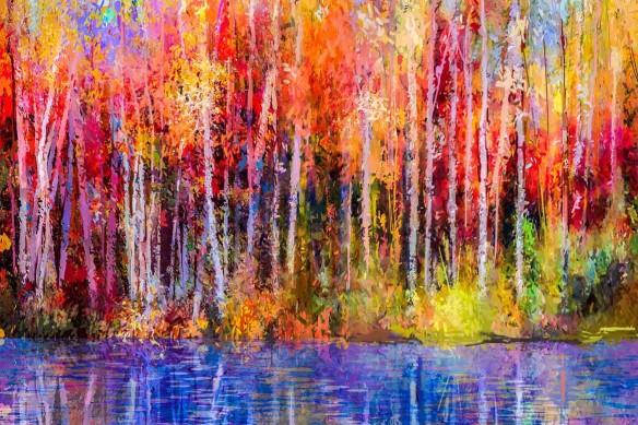 papier peint arbre foret coloré