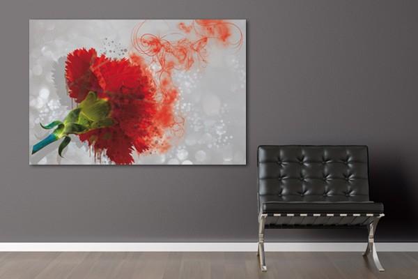 tableau fleur oeillet. Black Bedroom Furniture Sets. Home Design Ideas
