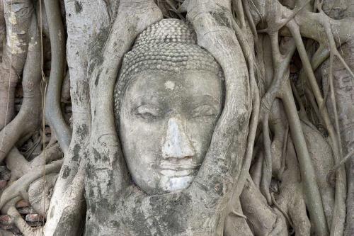 tableau-bouddha-siddhartha