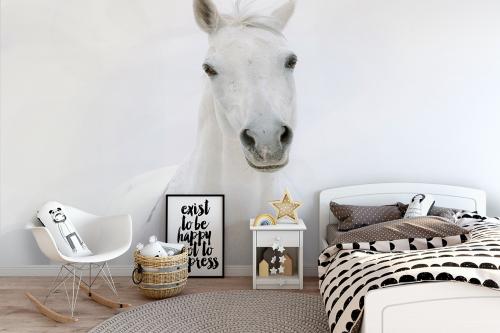 Papier peint chambre fille Cheval blanc