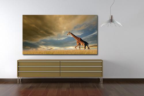 Tableau girafe dans la plaine Africaine