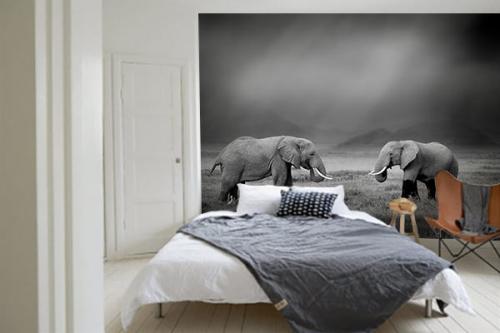 Papier peint gris Deux éléphants
