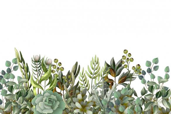 tapisserie-jungle-de-succulentes