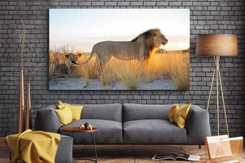 Tableau toile Frères lions