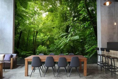 Papier peint forêt tropicale Guatemala