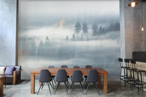 Papier peint panoramique Forêt brumeuse
