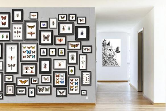 Papier peint couloir Collection de Papillons