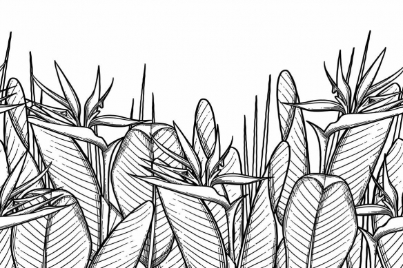tissu mural noir et blanc heliconia