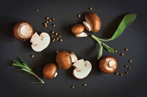 papier peint lessivable champignons de paris bruns