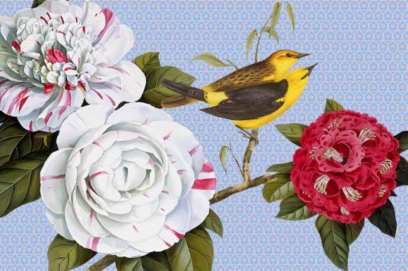 tableau décoration salon fleurs et oiseaux