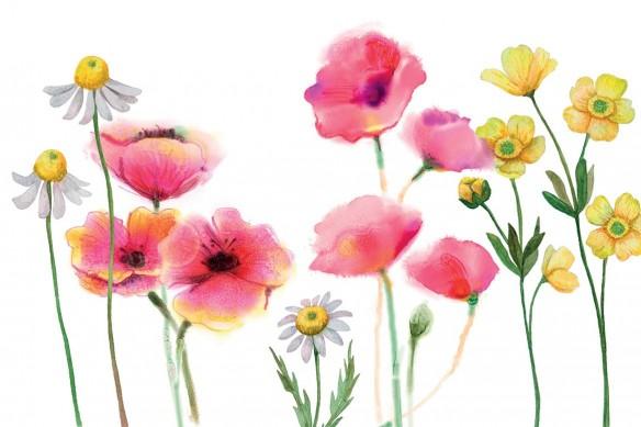 papier-peint-fleuri-grosses-fleurs-des-champs