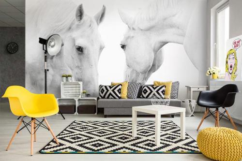 papier peint salon chevaux blanc