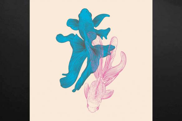 tableau-poisson-colore