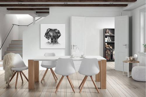 Tableau noir et blanc Ours et son reflet
