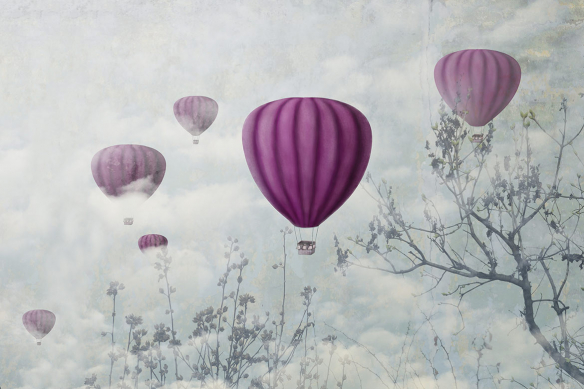 papier-peint-arbre-et-montgolfières