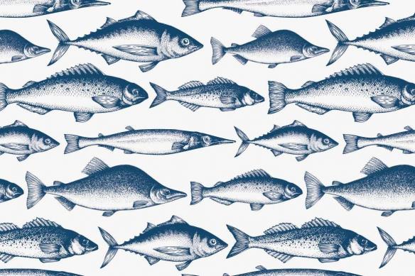 papier-peint-pour-cuisine-mer-et-poissons