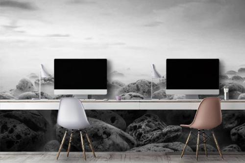 tapisserie-panoramique-paysage-noir-et-blanc-smog