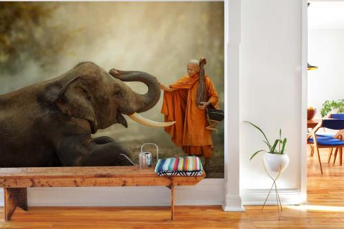 Papier peint photo Bonze et éléphant
