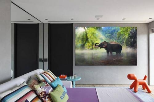 tableau-tropical-éléphant-dans-la-jungle