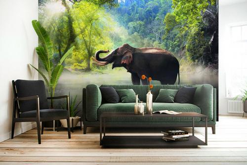 papier-peint-jungle-éléphant