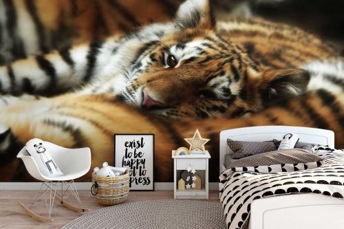 Papier peint animaux Sieste du Tigre