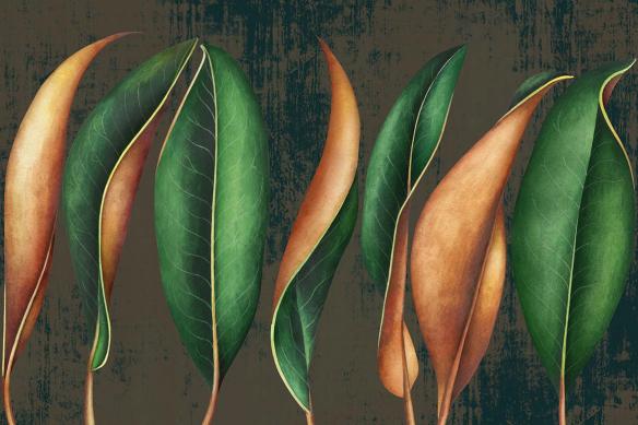 tapisserie-feuillage-caduque