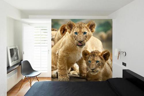 papier-peint-savane-lionceaux