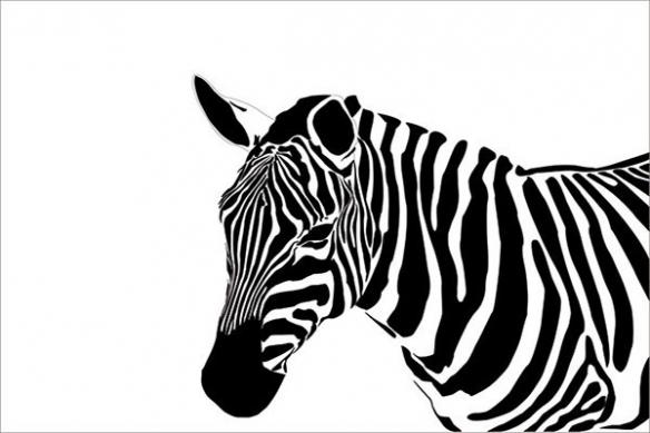 déco murale noir et blanc Zèbre