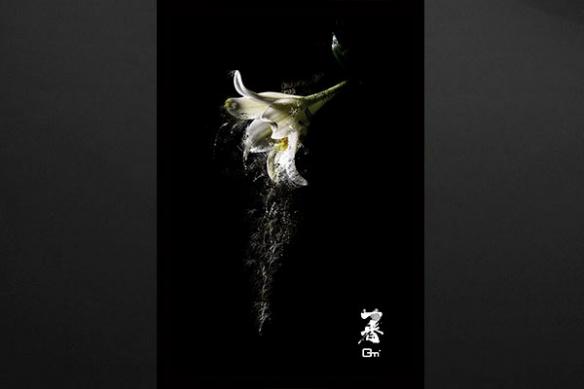 décoration tableau zen design fleur
