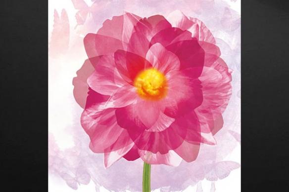rose déco design moderne fleur