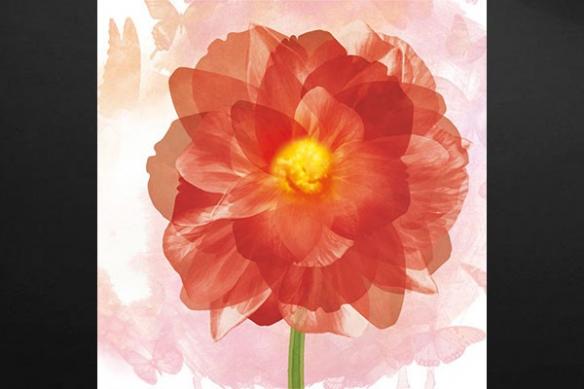 rouge toile contemporain fleur
